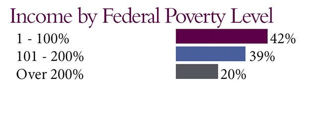 Income by federal poverty level